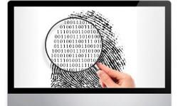 informatica forense forli